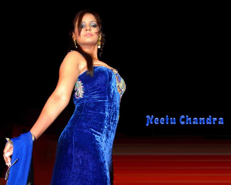 Neetu Chandra Gorgeous Blue Dress Wallpaper