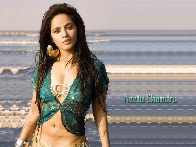 Neetu Chandra Hot Navel Glamour Wallpaper