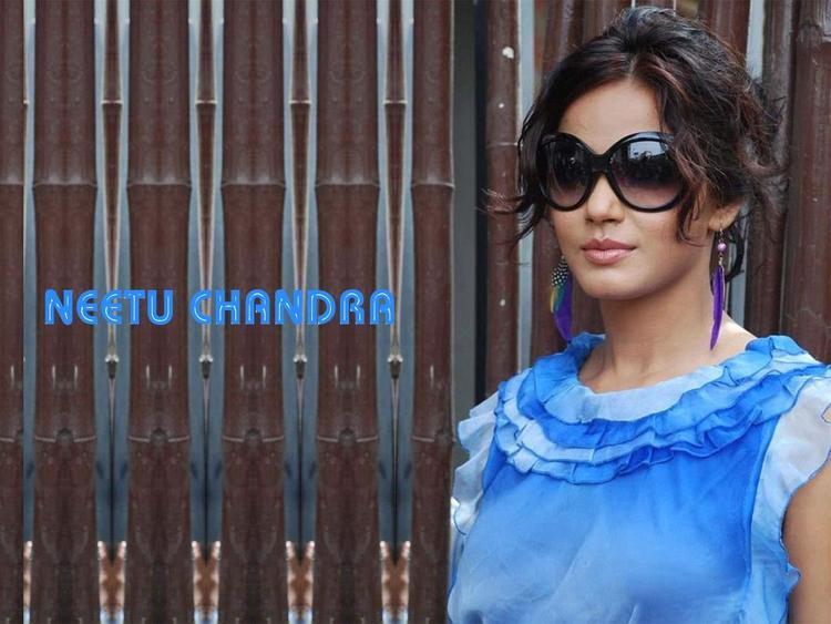 Neetu Chandra Hot Stylist Wallpaper