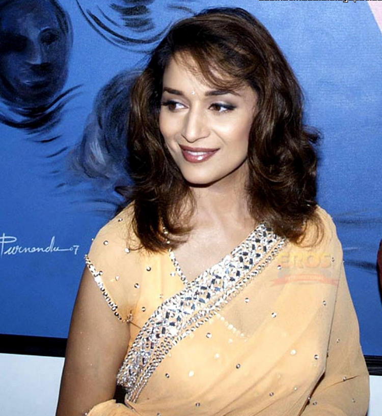 Madhuri Dixit Sizzling Hot Sexy Look In Saree