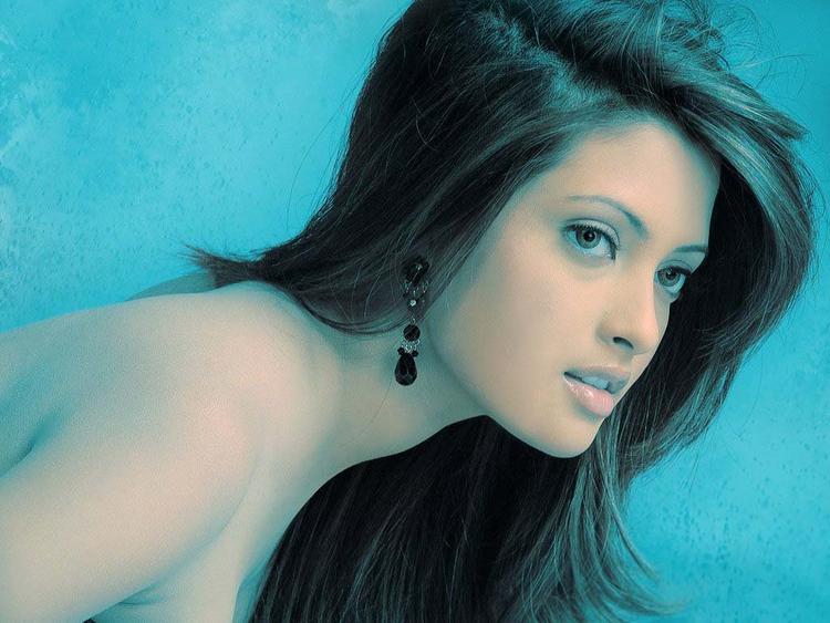 Riya Sen Sizzling Sexy Photo