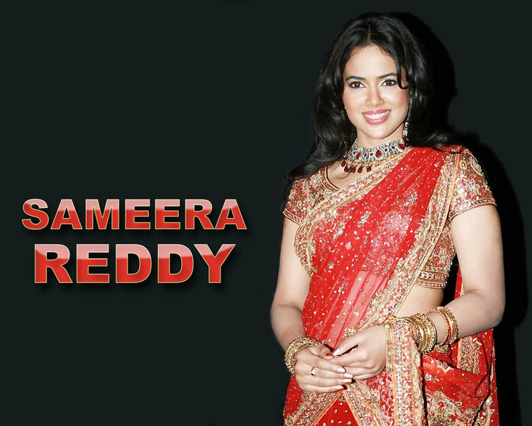 Sameera Reddy Gorgeous Saree Awesome Look Wallpaper