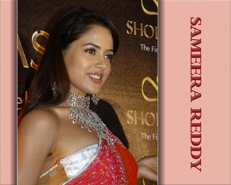 Sameera Reddy Sweet Smile Face Wallpaper
