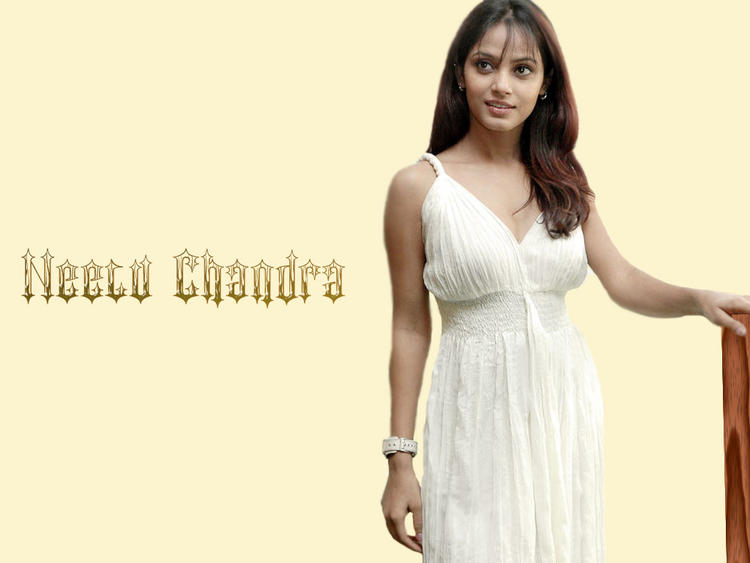 Hot Model Neetu Chandra wallpaper