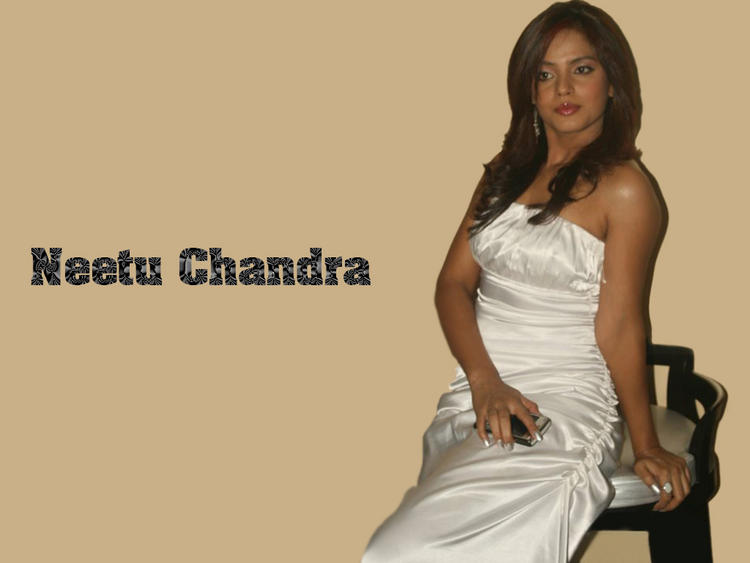 Neetu Chandra Latest Glamour Wallpaper
