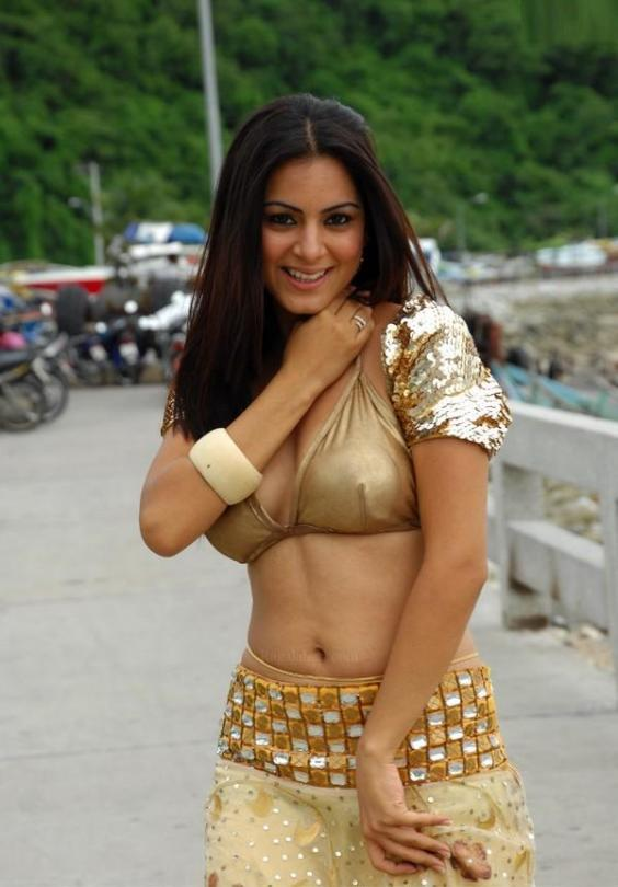 Shraddha Arya Hot Photo