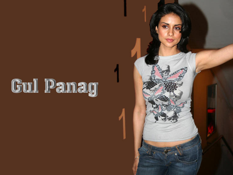 Feet Gul Panag Beauty Face Look Wallpaper