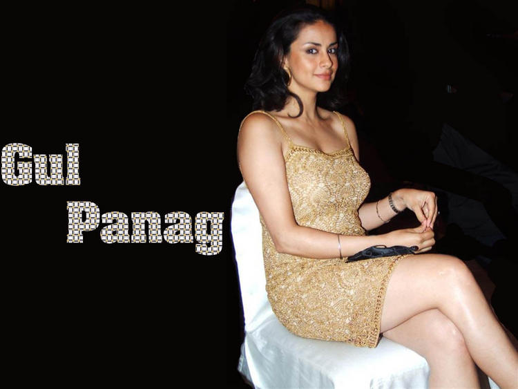 Gul Panag Hot Sleeveless Dress Wallpaper
