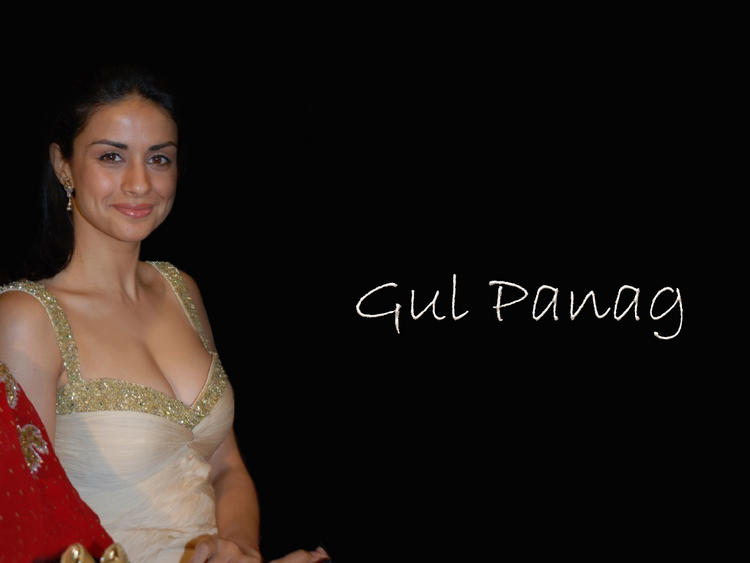 Gul Panag Sexy Cleavages Show Wallpaper