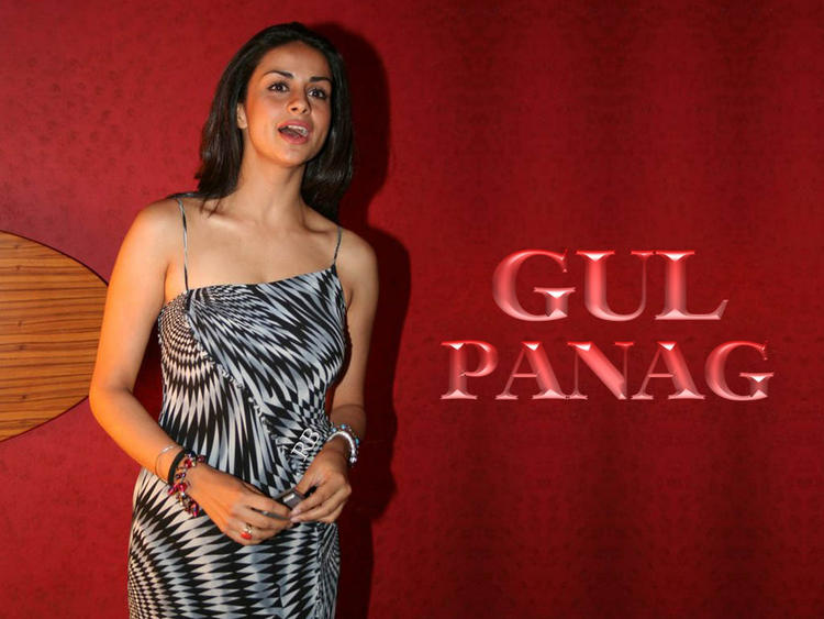 Gul Panag Sexy Dress Wallpaper