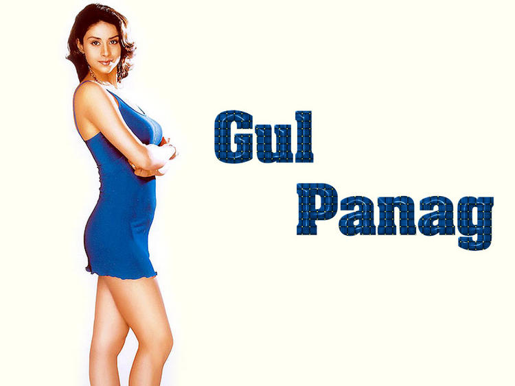 Gul Panag Short Dress Wallpaper