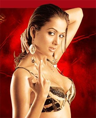 Amrita Arora Bikini Hot Wallpaper