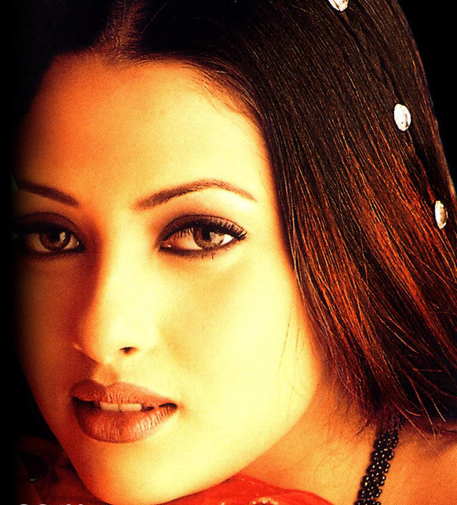 Riya Sen Beautiful Look Wallpaper