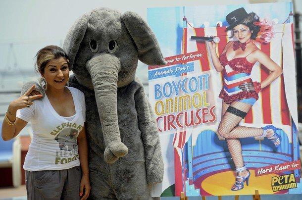 Bollywood Playback Singer Hard Kaur Poses With PETA Volunteer