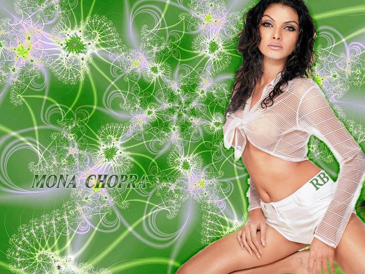 Mona Chopra Spicy Navel Exposing Wallpaper