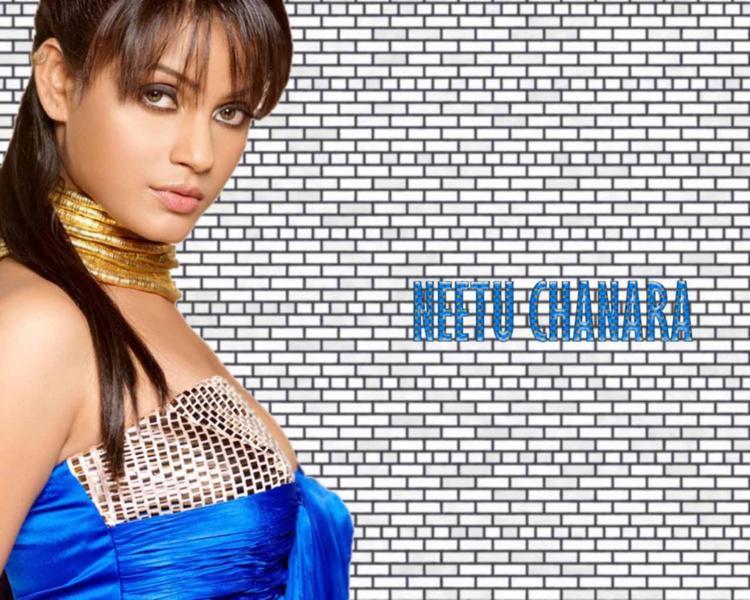 Neetu Chandra Hot Killer Look Wallpaper