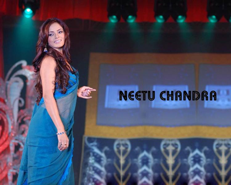 Neetu Chandra In Transparent Saree Wallpaper