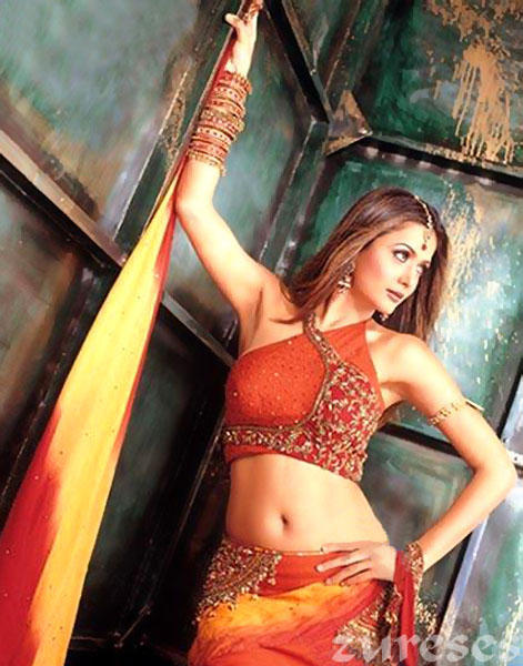 Amrita Arora Sexy Navel Wallpaper