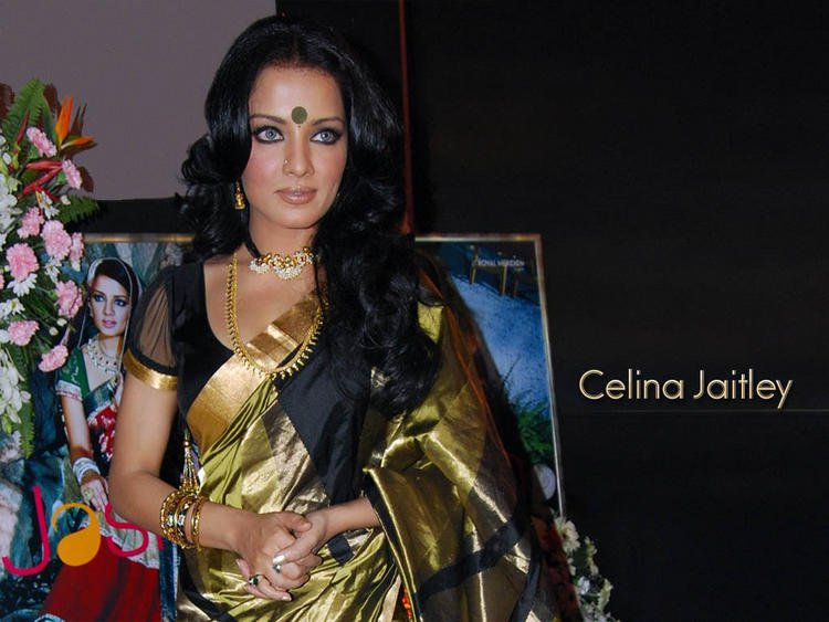 Celina Jaitley Glamour Wallpaper In Traditional Saree