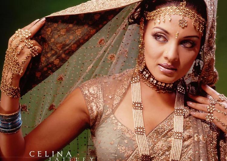 Celina Jaitley Indian Bridal Look Wallpaper