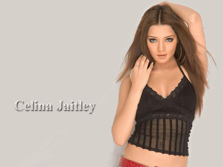 Celina Jaitley Latest Sexiest Face Look Wallpaper