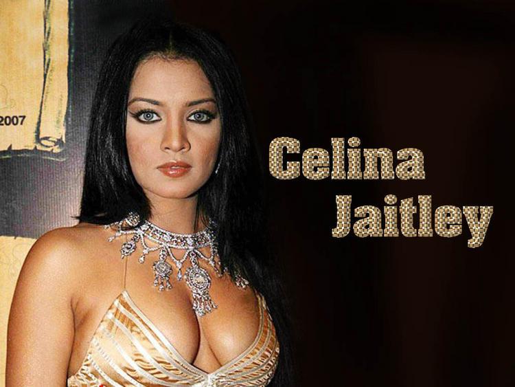 Celina Jaitley Sexy Boob Show Wallpaper