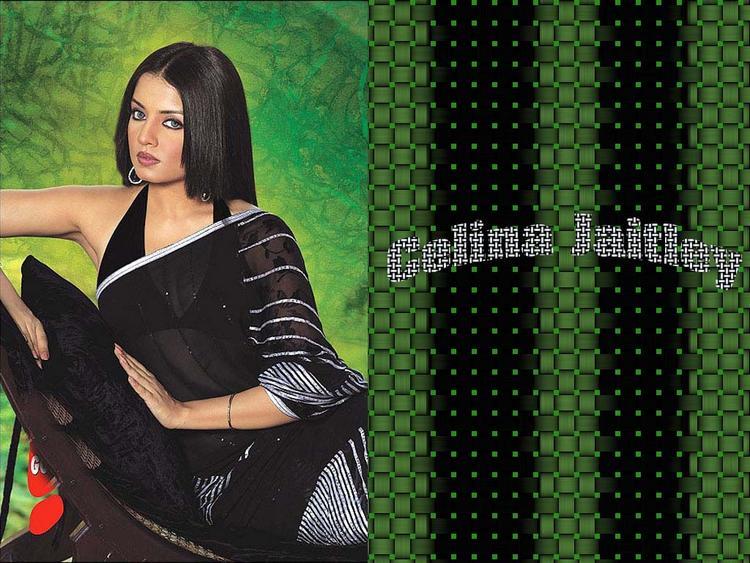 Celina Jaitley Wallpaper In Black Transparent Saree