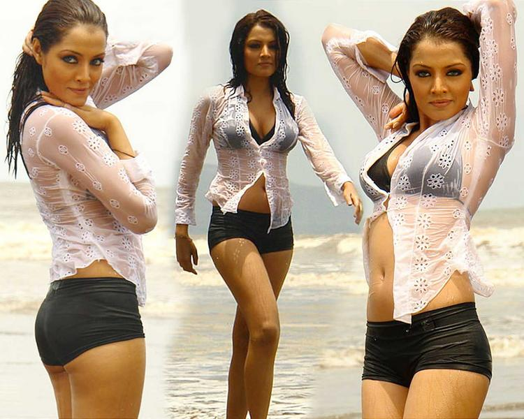 Celina Jaitley Wet Outfit In Swim Dress
