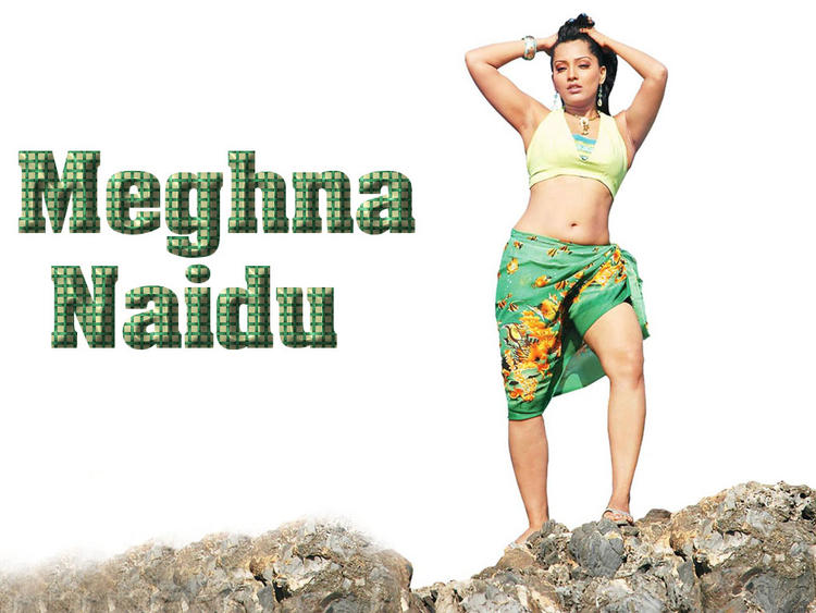 Meghna Naidu Spicy And Hot Wallpaper