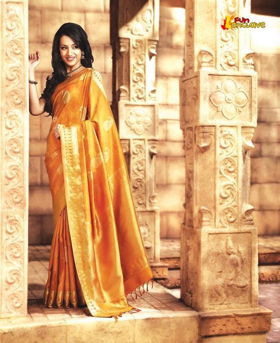 Trisha Krishnan Gorgeous Tranditional Saree Photo Shoot