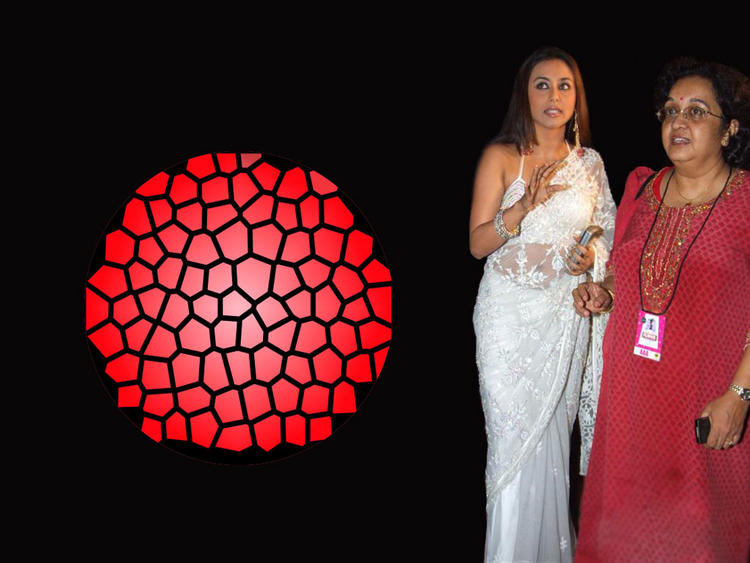 Rani Mukherjee Wallpaper In White Saree