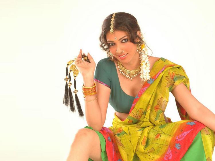 Yukta Mookhey Hot and Sexy Still In Saree