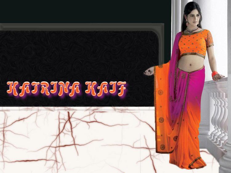 Katrina Kaif Sexy Saree Pose Wallpaper
