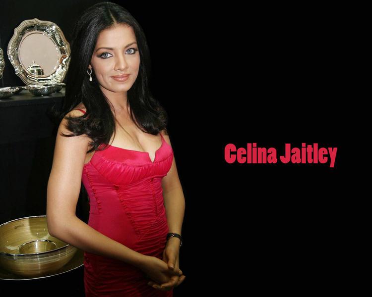 Celina Jaitley Charming Look Wallpaper