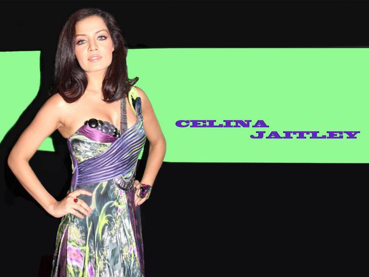 Celina Jaitley Gorgeous Look Wallpaper
