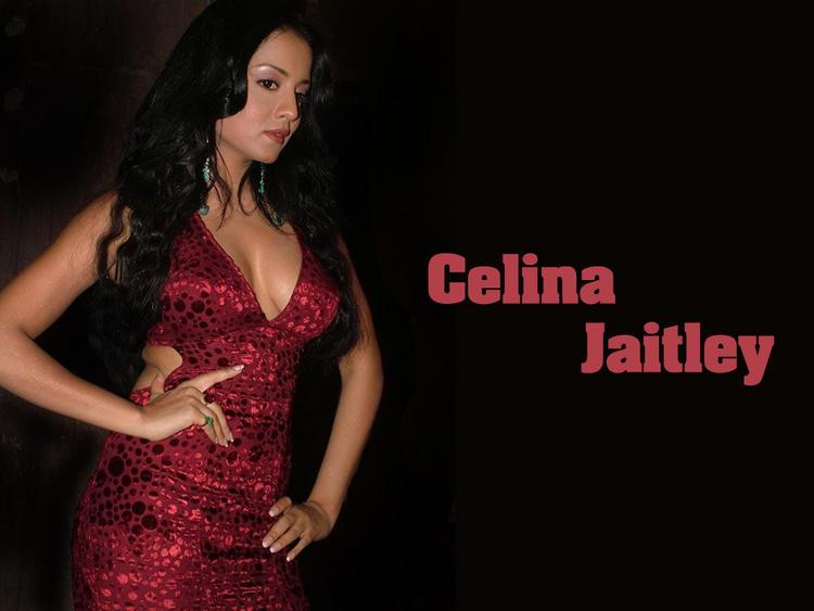 Celina Jaitley Sexy And Bold Wallpaper
