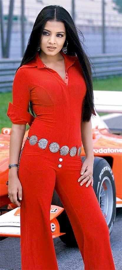 Hot Celina Jaitley Sexy In Red  Dress Wallpaper