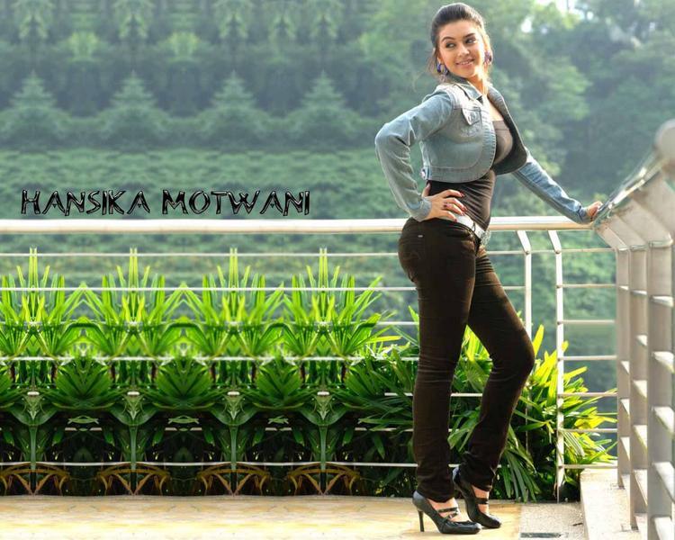 Hansika Motwani Stylist Wallpaper