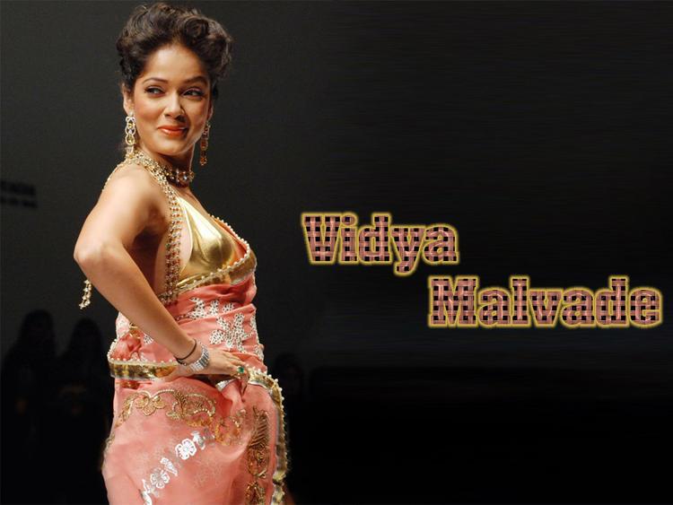 Vidya Malvade Sexy Pose In Saree