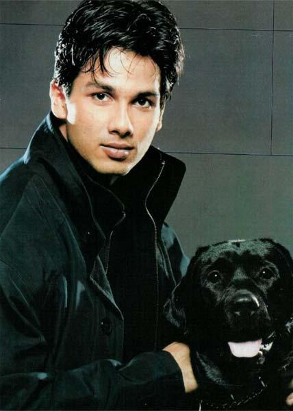 Shahid Kapoor Hot Wallpaper With Dog