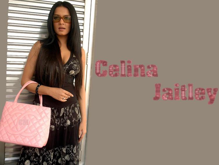 Celina Jaitley Hot Stylist Wallpaper