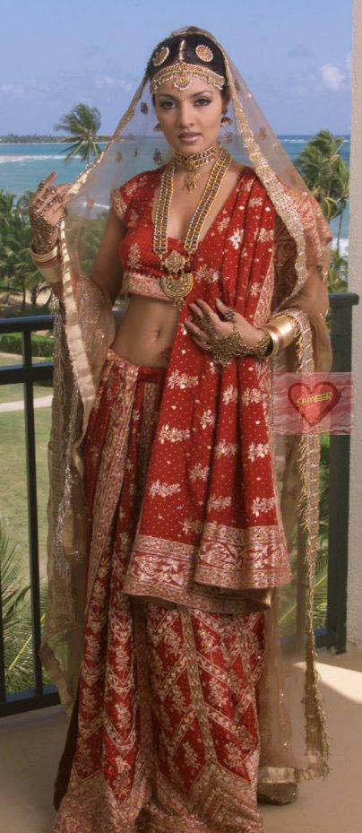 Celina Jaitley Looking Very Beautiful In Saree