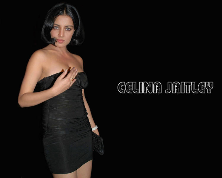 Celina Jaitley Sleeveless Dress Wallpaper