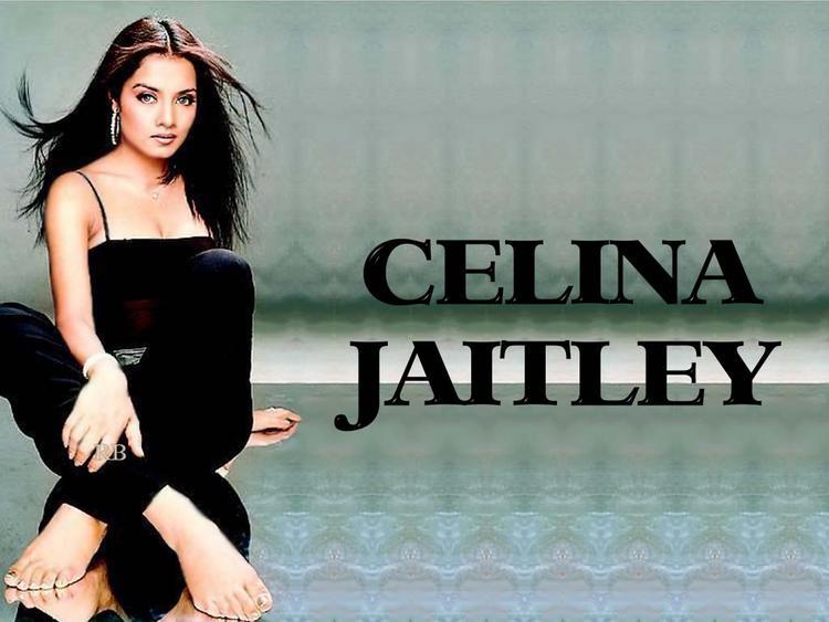 Spicy Actress Celina Jaitley Sexy Wallpaper