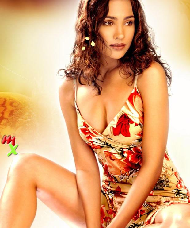Lara Dutta Open Boob Wallpaper