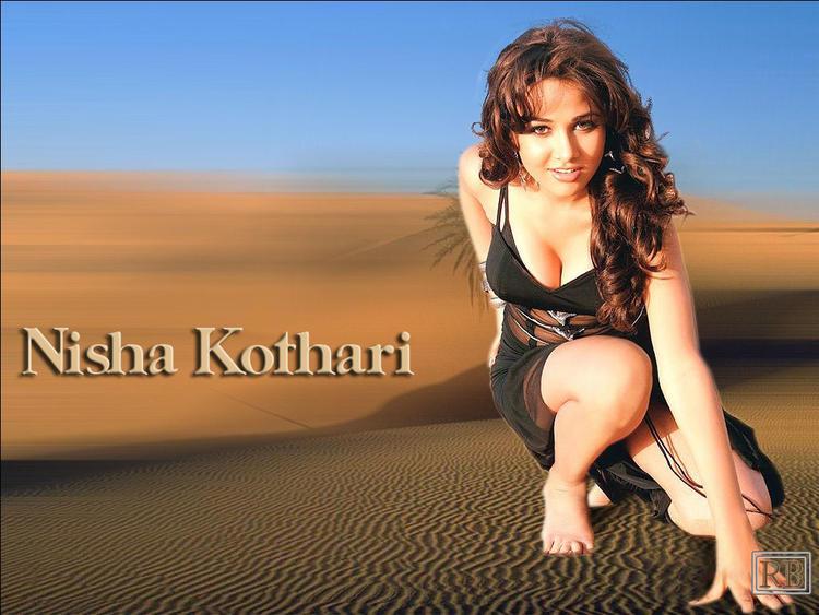 Nisha Kothari Deep Cleavages Show Wallpaper