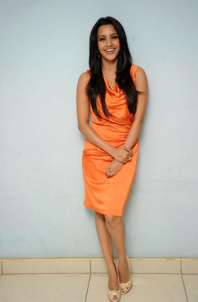 Priya Anand Orange Dress Hot Photo Shoot