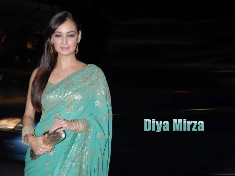 Diya Mirza Glamour Wallpaper In Gorgeous Saree