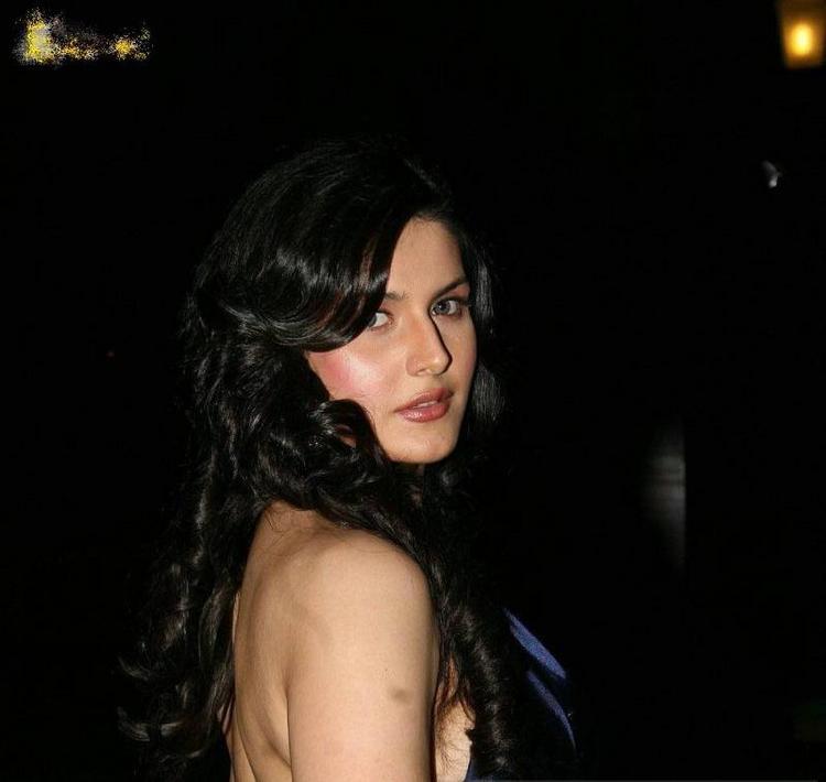 Bold Actress Zarine Khan Glamour Still
