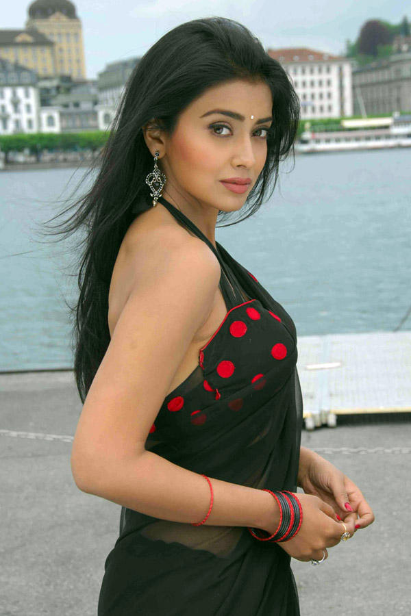 Shriya Saran Black Transparent Saree Still